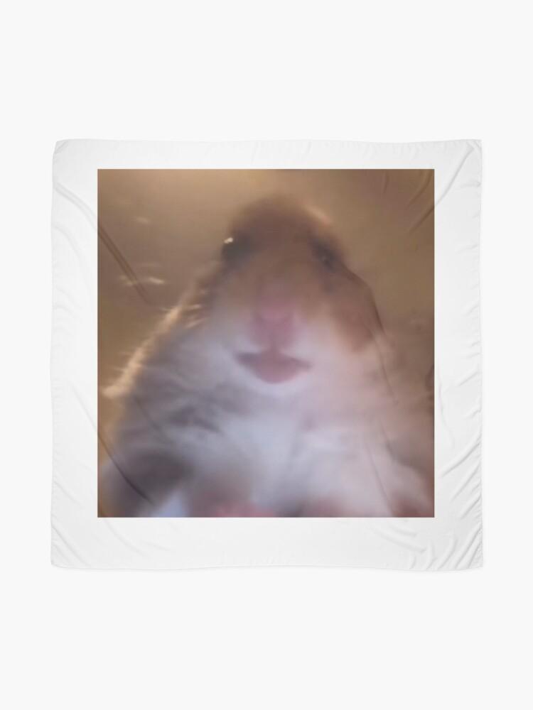 Dank Meme Hamster Staring Front Camera Shirt | Scarf