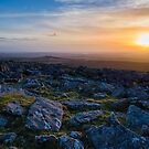 Moorland Late Evening Sun by Mark Smith