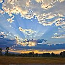 Morning's Glory by Tiana  McVay