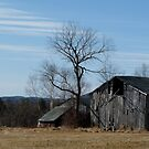 Winter Scene in Lincolnville by LifeInMaine