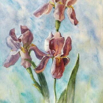 Irises by VVilka