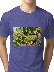 Grapes Tri-blend T-Shirt