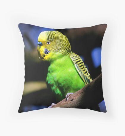 Budgerigar Throw Pillow