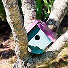 Birdhouse by Jaime Pharr