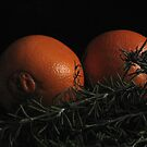 Oranges and Rosemary© by walela