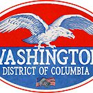 Washington DC Vintage District Of Columbia Eagle Flags Liberty Bell by MyHandmadeSigns