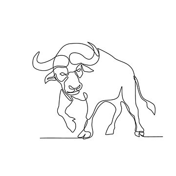 African Buffalo Continuous Line by patrimonio