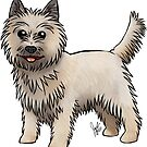 Cairn Terrier by Jennifer Stolzer