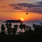 Costa Rica Sunset  by Lanis Rossi