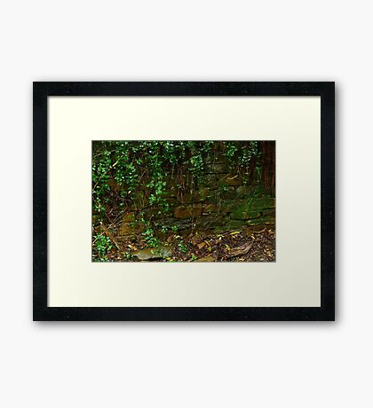 Stone Work,Stringers Creek Walhalla Framed Print