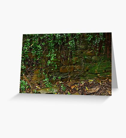 Stone Work,Stringers Creek Walhalla Greeting Card