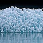 Icebergs in Tracy Arm Fjord 2 by Alex Preiss