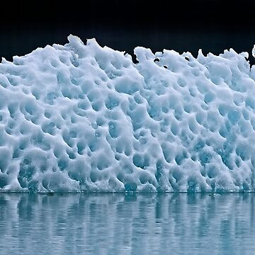 Icebergs in Tracy Arm Fjord 2 by alex4444