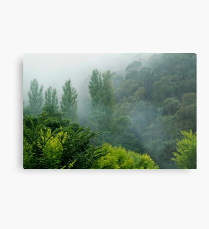 Weather Closes In, Walhalla, Gippsland Metal Print