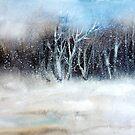 Schneesturm von ©Janis Zroback