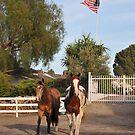 Patriotic Ponys by Walt Conklin