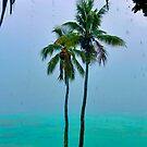 Tropical Storm by Ben Goode