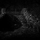 The Bridge at Midnight by Richard Hamilton-Veal