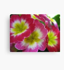 Stacking Flowers Canvas Print