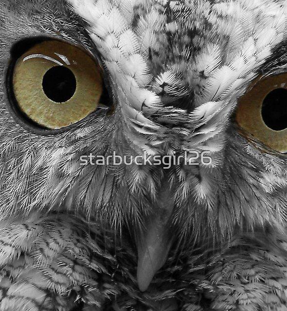 Depths of an Owl's Gaze by starbucksgirl26