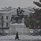 Andrew Jackson Statue, Lafayette Square by Matsumoto