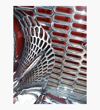 Grille Photographic Print