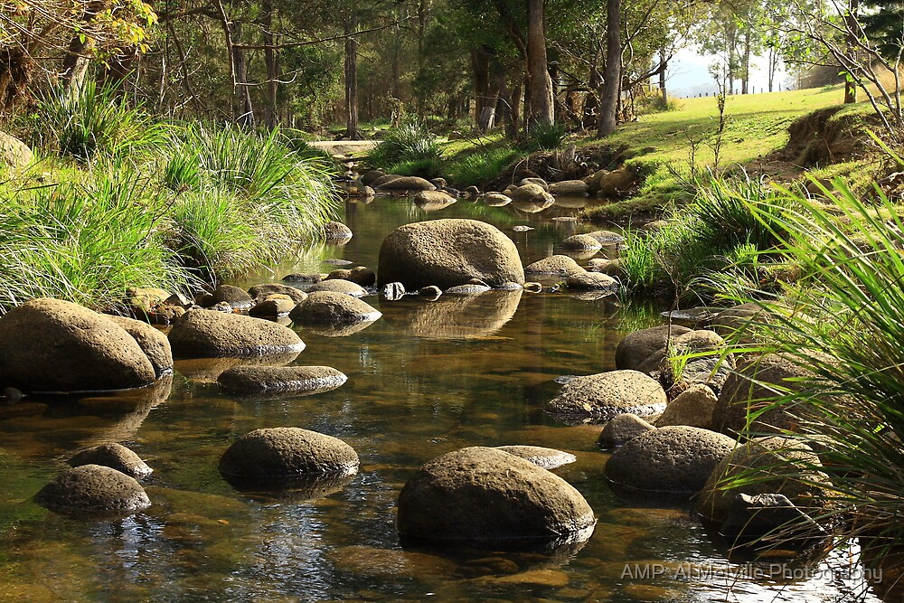 Stepping Stones - Mount Barney Queensland by AMP  Al Melville Photography