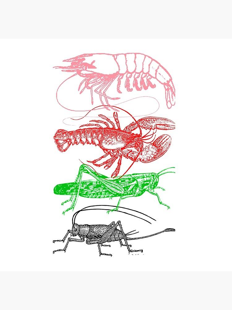 Shrimp, Lobster, Grasshopper and Cricket family line | Tote Bag