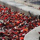 Fallen Autumn Leaves by Gilda Axelrod