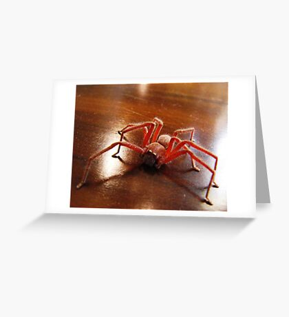 Creepy Spider (Arachnid) Greeting Card