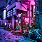 Snow over Tokyo residential area by Guillaume Marcotte