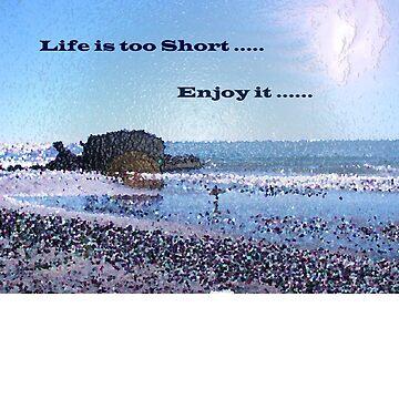 Enjoy it !! by carlosmendoza