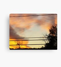 brush with fire Canvas Print
