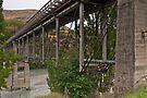 Lower Shotover Bridge by Werner Padarin