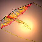 Sky Dragon by Bob Larson
