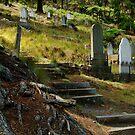 Walhalla Cemetery by Joe Mortelliti