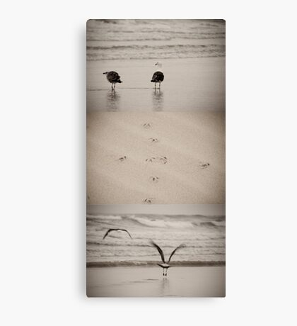 Fight or Flight? Canvas Print