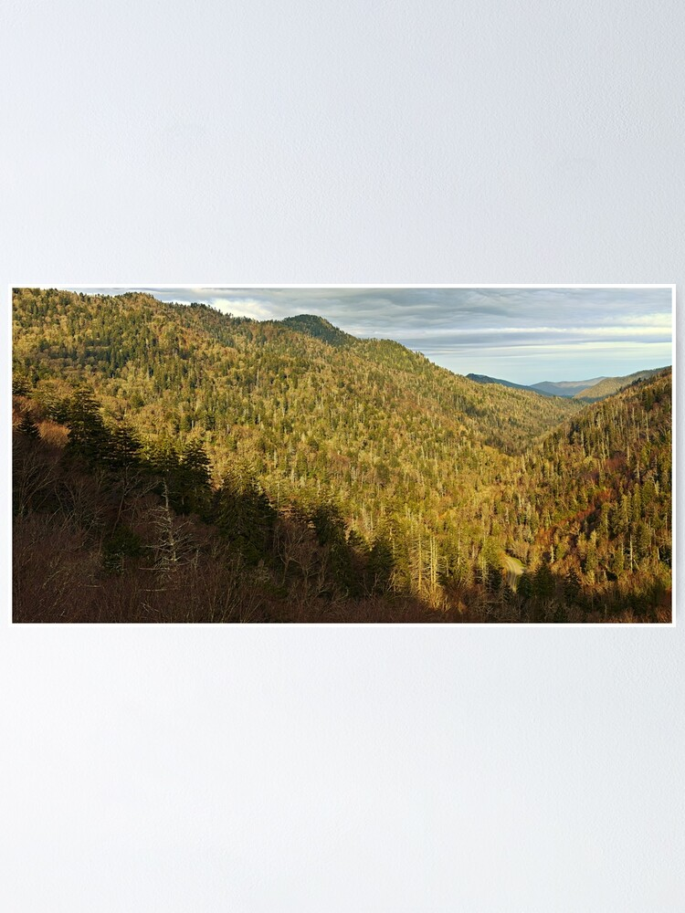 Alternate view of View From Morton Overlook Poster