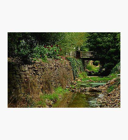 Stringers Creek, Right Hand Branch, Walhalla Photographic Print