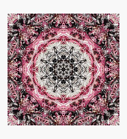 Pink Fractured Photographic Print