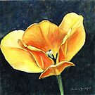 Open Tulip by Charlotte Yealey