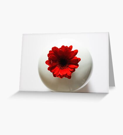 Simply red....and white Greeting Card