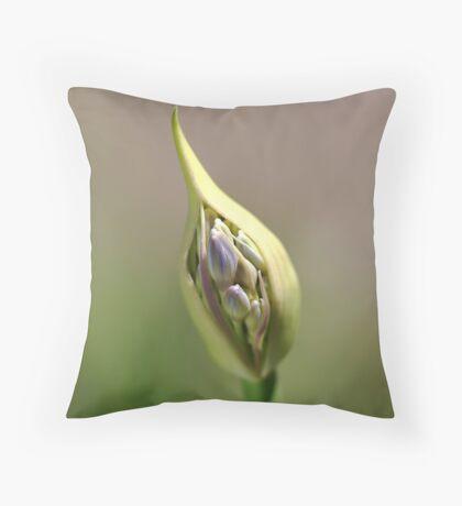 flower-agapanthus-bud Throw Pillow