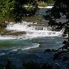 Niagara Falls River by klziegler