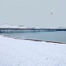 Brighton Palace Pier in Snow by Irina Chuckowree