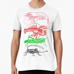 U1 Shrimp