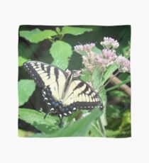 Canadian Tiger Swallowtail Butterfly Scarf