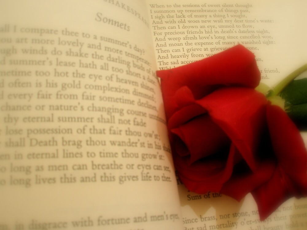 Sonnets by Melissa Park