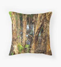 Paper Bark Trees (Melaleuca quinquenervia) Throw Pillow