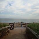 Beach Day by imphavok